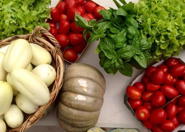Cucumbers, pumpkin, garden herbs and Roma tomatoes